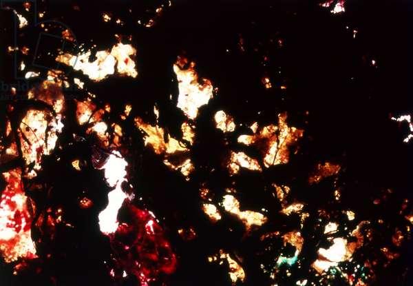 NA_53 [Rubies & Emeralds], (2003), print