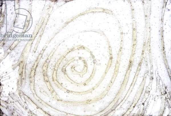 NA_24 [Sushi Heaven], (2002), print