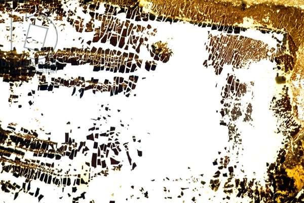 NA_6 [Arid], 2002, print