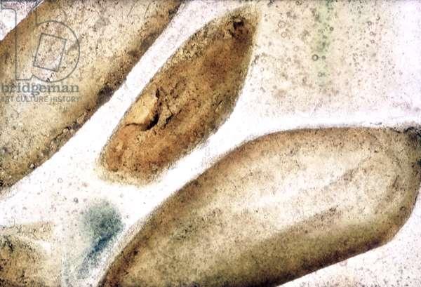 NA_0 [Boulder], (2002), print