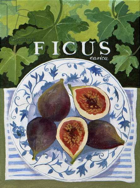 Fieus (figs), 2014, (acrylic on canvas)
