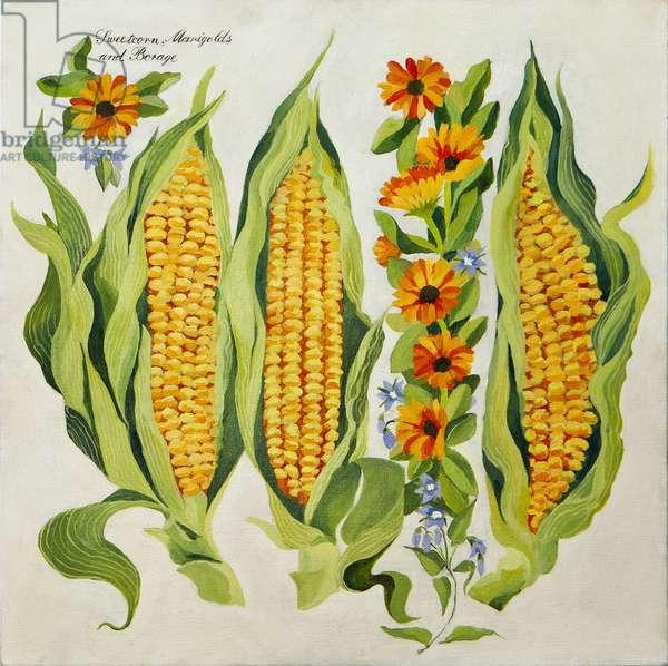 Corn and marrow flowers, 2014, (acrylic on canvas)