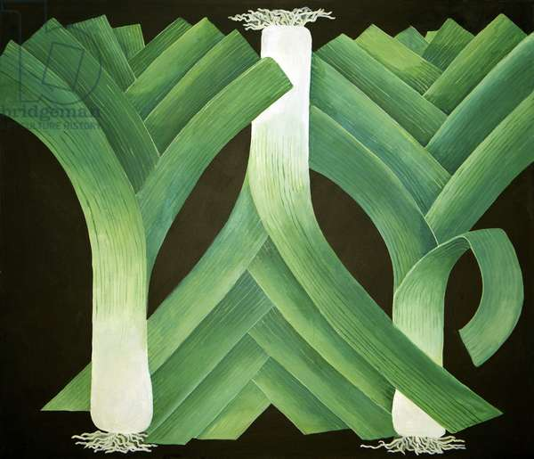Leeks, 2014, (acrylic on canvas)
