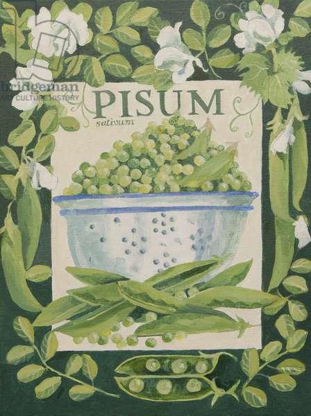 Pisum, Peas (acrylic)