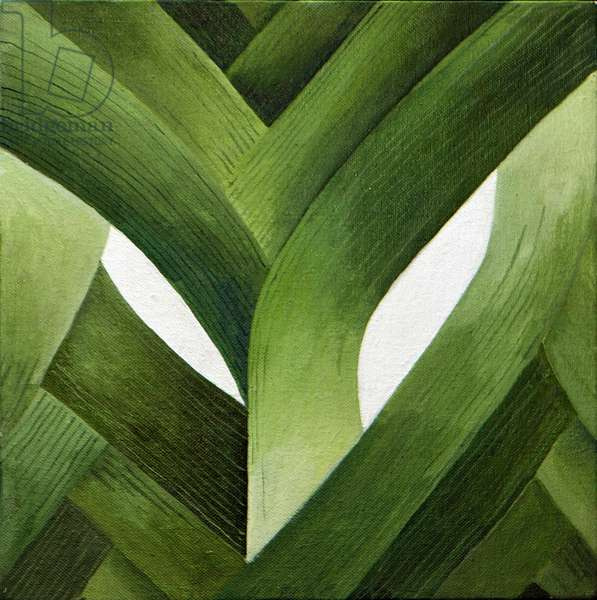 Leeks, 2013, (acrylic on canvas)