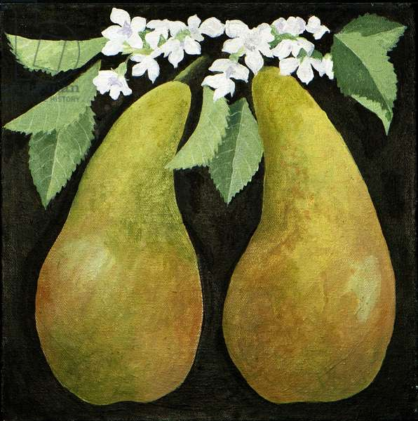 Pears, 2013, (acrylic on canvas)