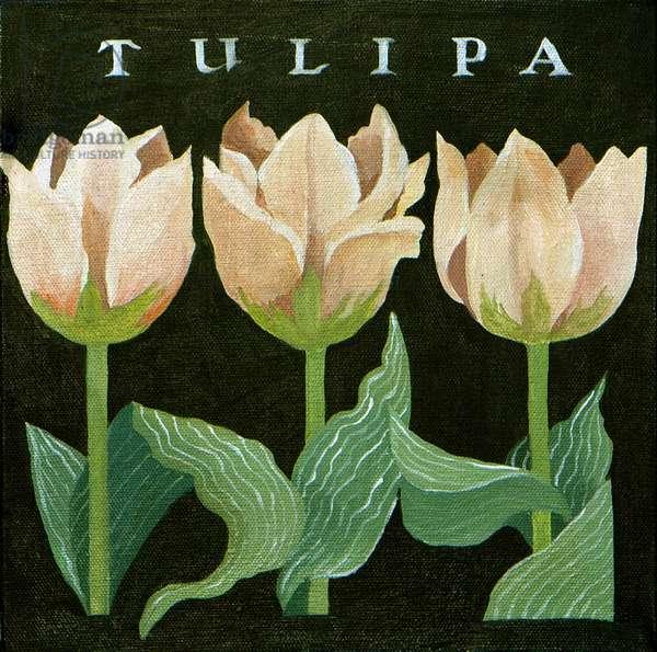 Tulips, 2013, (acrylic on canvas)