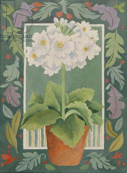 White Primula (acrylic)