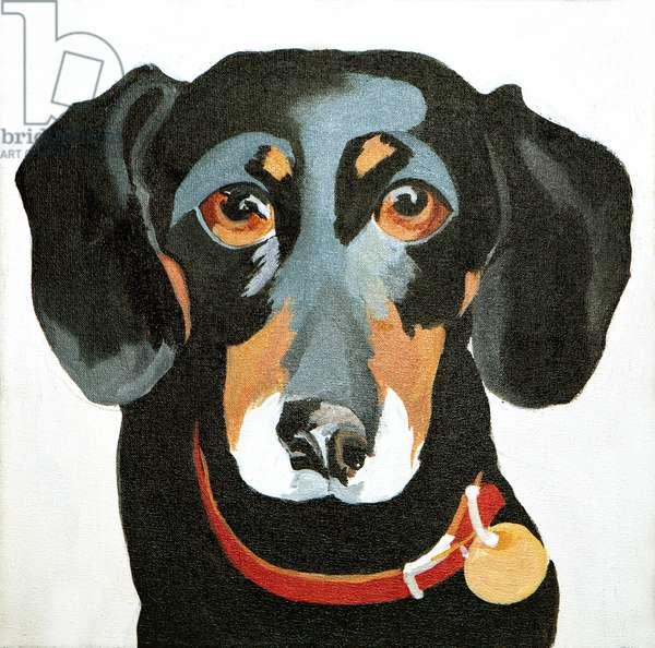 Buster, 2012, (acrylic on canvas)