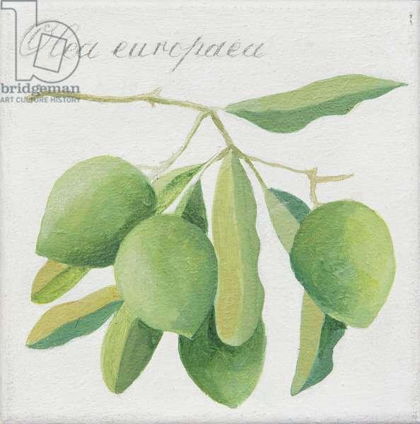 Green Olives (acrylic)