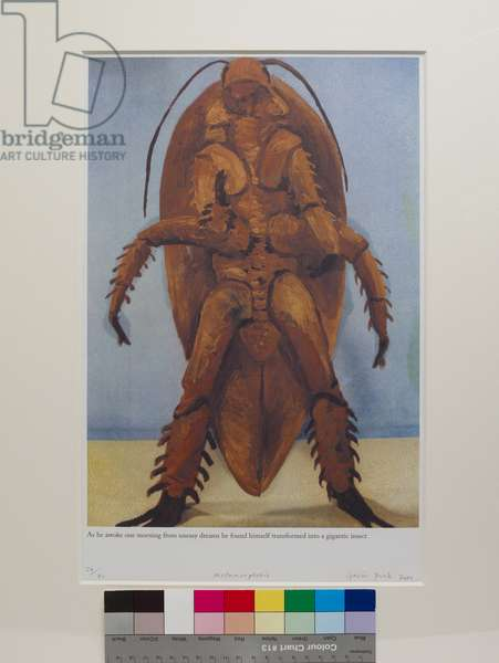 Metamorphosis, 2000 (offset litho)