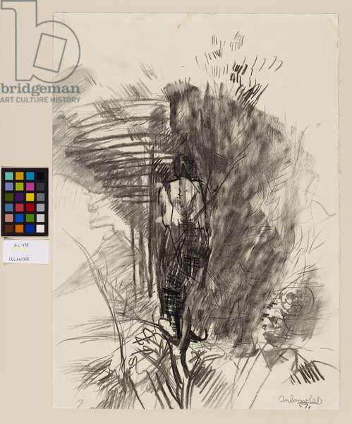 Man in a Tree, 1957 (pencil on paper)