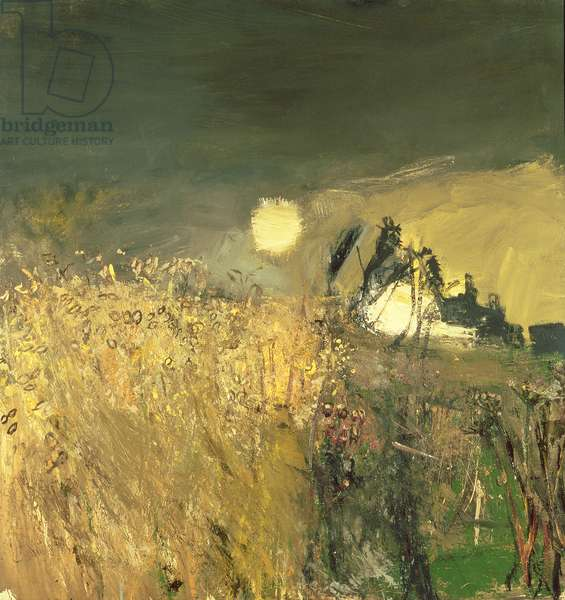 A Field of Oats, 1962 (oil on board)
