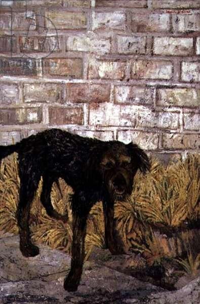 Dog, 1955 (oil on canvas)