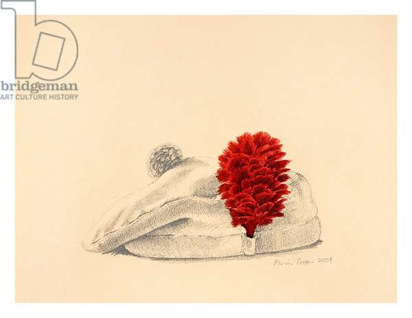 A Black Watch Red hackle, 2004 (w/c on paper)