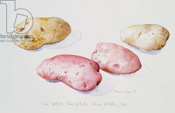 Potato Study, 1993 (w/c)