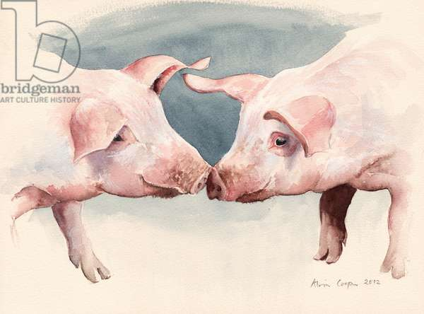 Two Little Piggies, 2012 (w/c on paper)