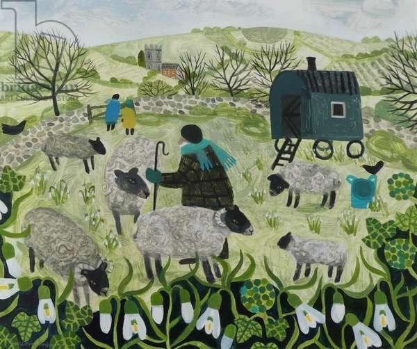 Spring Shepherd