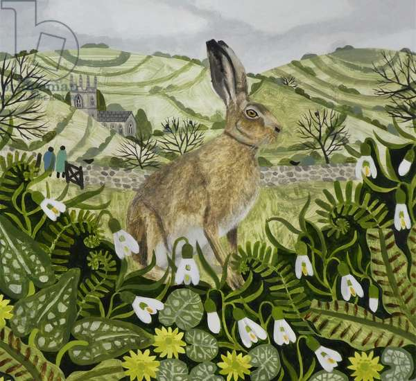 Seated Spring Hare
