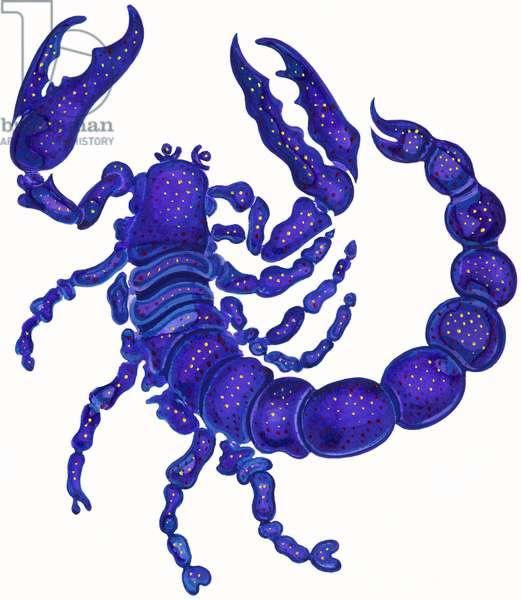 Scorpio, 1996,(ink and gouache)