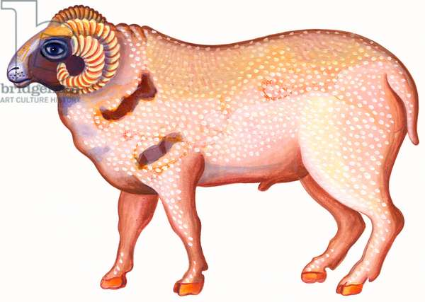 Aries the Ram, 1996, (ink and gouache)
