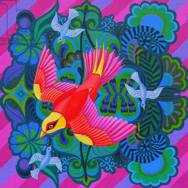 Swooping bird, 2013, (oil on canvas)