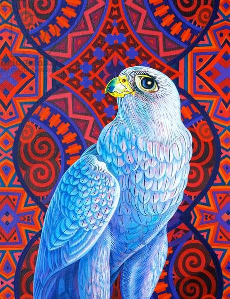 Grey falcon, 2017, (oil on canvas)