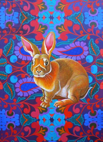 Rabbit, 2014, (oil on canvas)