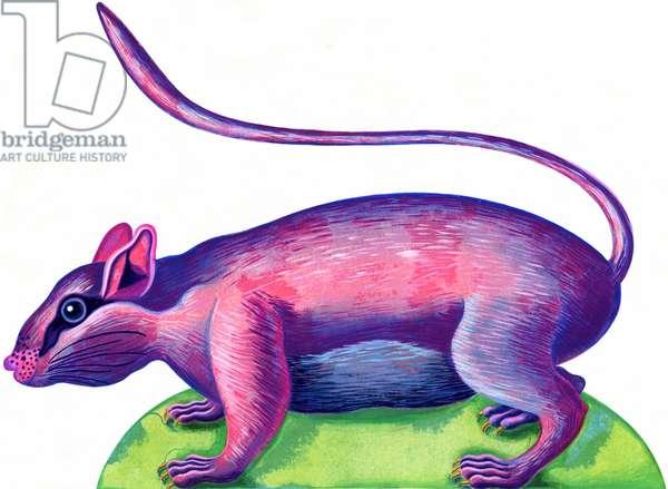 Rat, 1996, (ink and gouache)
