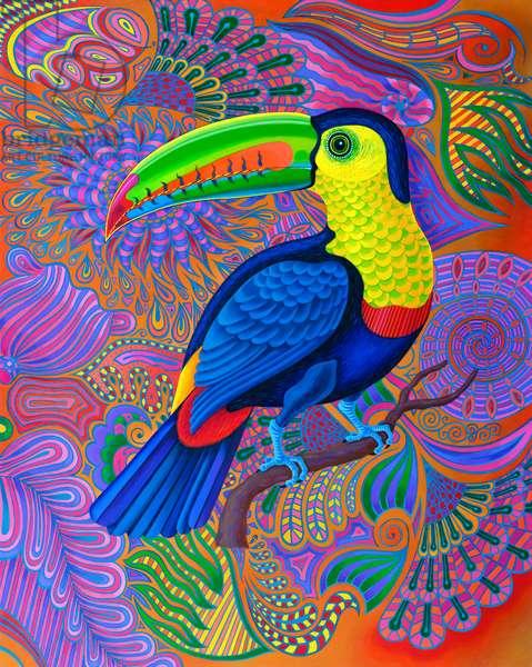 Toucan, 2021, (oil on canvas)