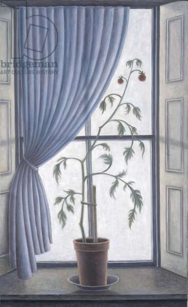 Plant in Window, 2003 (oil on canvas)
