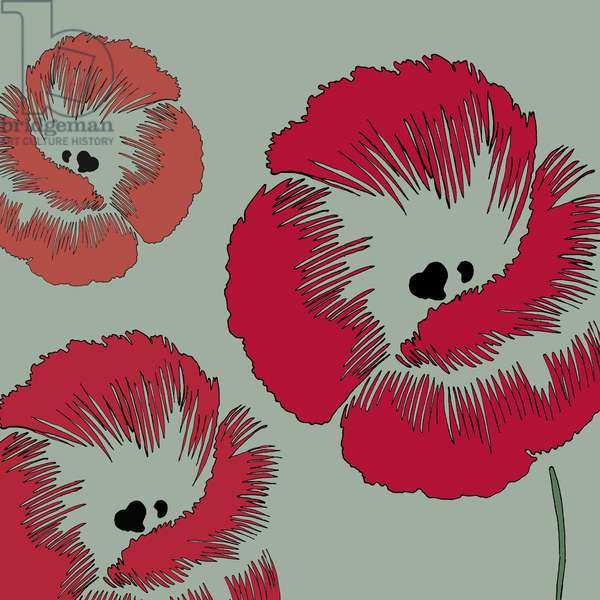 Picnic Poppy, 2005 (digital)