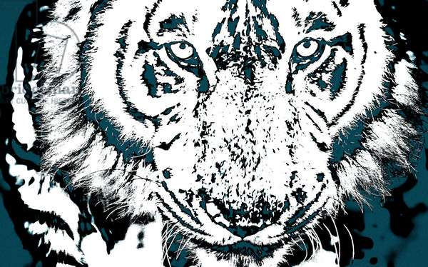 Year of the Tiger (5), 2021 (painted photograph)