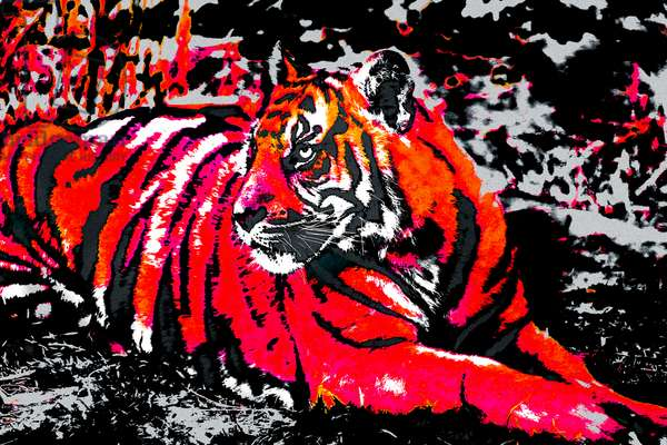Year of the Tiger (7), 2021 (painted photograph)
