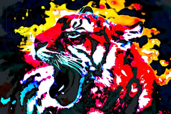 Year of the Tiger (8), 2021 (painted photograph)