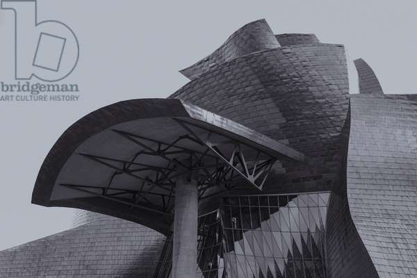 Guggenheim Bilbao 3, from the series Iconic Buildings, 2017 (photograph)