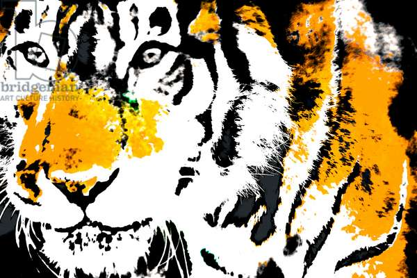 Year of the Tiger (3), 2021 (painted photograph)