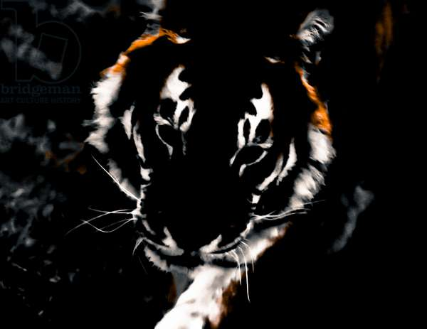 Year of the Tiger (4), 2021 (painted photograph)