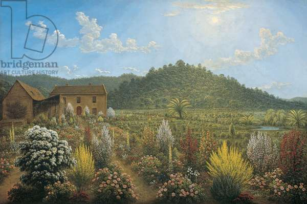 A View of the Artist's House and Garden, in Mills Plains, Van Diemen's Land, 1835 (oil on canvas)