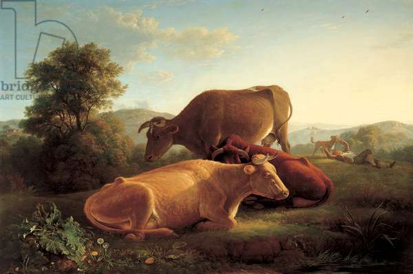 Cattle, The last gleam of the setting sun, 1816 (oil on canvas)