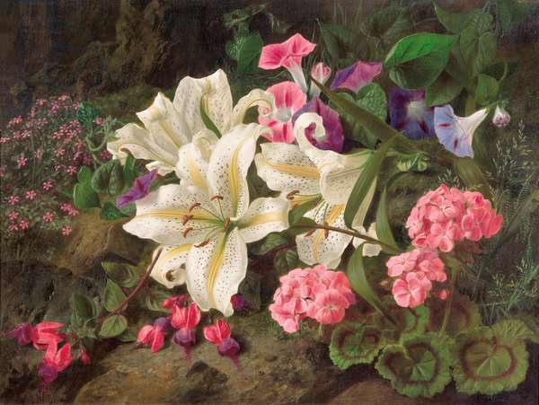 Golden-rayed lily of Japan, 1869 (oil on canvas)