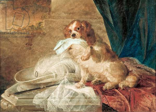 Lady's Pet, 1855 (oil on canvas on cardboard)