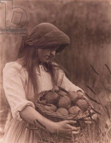 Girl with apples, c.1906 (bromide photo on texture paper)