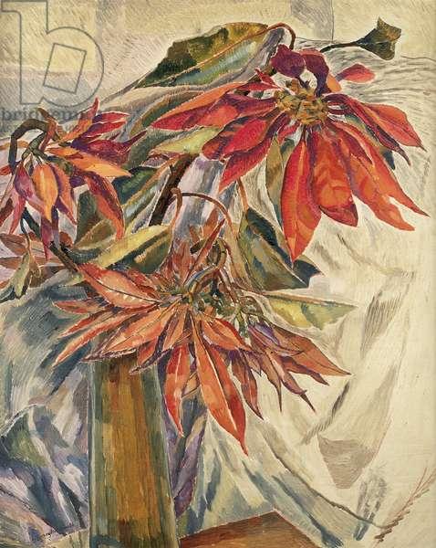 Poinsettias, 1931 (oil on pulpboard)