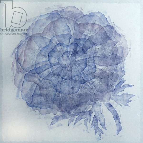 Blue georgette, 2019, (monoprint)