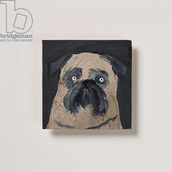 Pug, 2020 (oil on canvas)