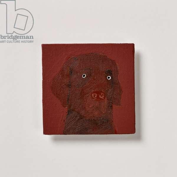 Chocolate Labrador, 2020 (oil on canvas)