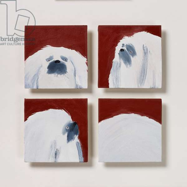 Pekingese, 2020 (oil on canvas)