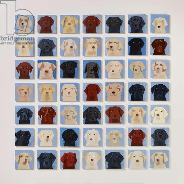 49 Labradors, 2020 (oil on canvas)