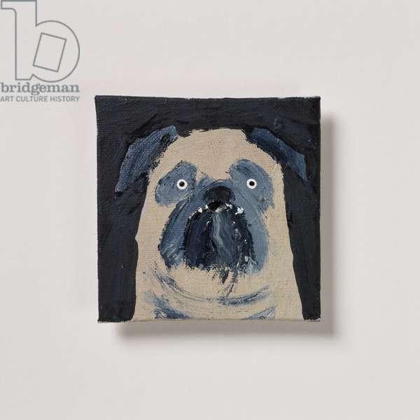 Pug with Teeth, 2020 (oil on canvas)